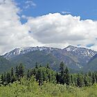 The Cabint Mountians in Montana by MissMimi63