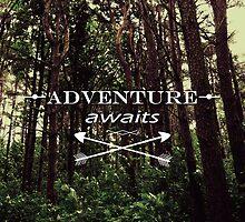 Adventure Awaits by Nicklas Gustafsson