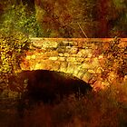Stone Bridge by JohnOdz