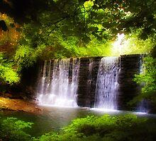 Wonderous Waterfall by Bill Cannon