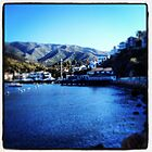 Catalina, CA by photosbyamy