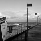 Welcome to Frankston Pier by Carmel Abblitt