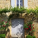 Vines 'n Roses by nigelphoto