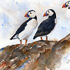 Puffin's rock by Ruth Nolan