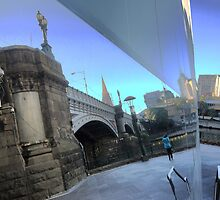Polly Reflecting on Melbourne. by cullodenmist