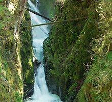 Sol Duc Falls by Jim Stiles