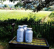 Milk canisters on a cart. by littleredbird