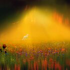 Magic Meadow by Igor Zenin