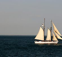 Sailing Nantucket Sound by BarbBPhoto