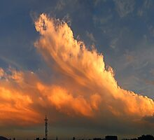 ©HCS Orange Cumulonimbus Pilleus by OmarHernandez