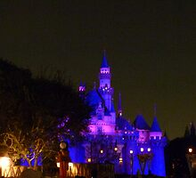 Disneyland Fairytale Castle at Dusk by FangFeatures