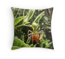 Green Lynx Spider w/ Prey Throw Pillow