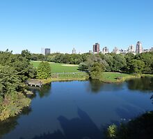 NYC View in Central Park by FangFeatures