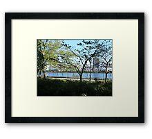 NYC Central Park Framed Print