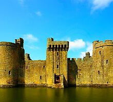 Bodiam Castle by Steve