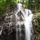 Malaysian Waterfall by MunschkinMedia