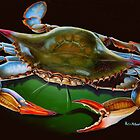 Blue Crab Open Claw by Phyllis Beiser