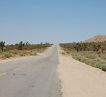 Desolate Desert Road by karinast123