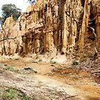 Golden Gully - Tambaroora NSW Australia by Phil Woodman
