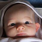 Baby Blue Eyes by Suvi  Mahonen