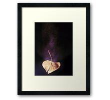 the world in a leaf Framed Print
