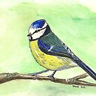 Blue Tit by Sam Burchell