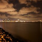 Downtown San Diego across the bay by Chris Sauerwald