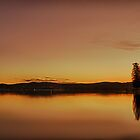 Speers Point Sunset Reflections by Emily Freeman Photography