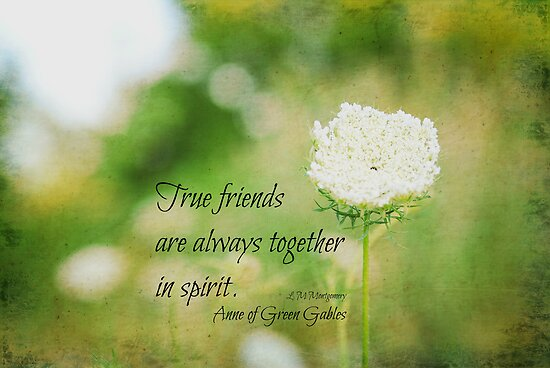 Quotes From Anne Of Green Gables About Friendship : Quot true friends anne of green gables by kimberose redbubble