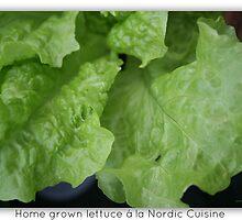 Home Grown Lettuce á lá Nordic Cuisine Including Ant by patjila