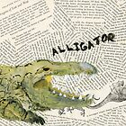 Alligator  by CassTebeau