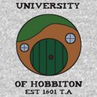 University of Hobbiton by Zapdosman