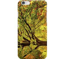 Golden Oak Tree  iPhone Case/Skin