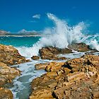 Wave Crash by Monika Nakládalová