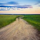 Dirty Rural Road In Countryside. by GrishkaBruev