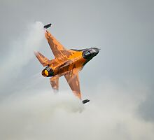 RNLAF Demoteam by Delfino