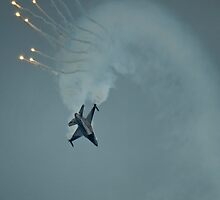 F16 Looping by Delfino