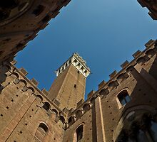 Torre del Mangia by Roger McNally