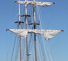 Peacemaker - Bay City (Michigan) Tall Ships - 2013 by Francis LaLonde