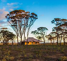 Old Farm House by Todd Kluczniak