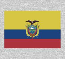 Ecuador Flag by cadellin