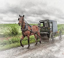 Amish Country by shuttermom