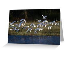 Heading To Roost Greeting Card