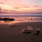 Sunrise in Apollo Bay by Matthew Lokot