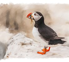 Puffin With Sand eels by Moonlake