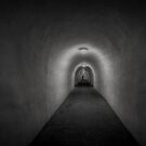Tunnel Vision by Robyn Carter