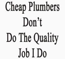 Cheap Plumbers Don't Do The Quality Job I Do  by supernova23
