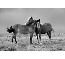Lean on Me, B&W Photographic Print