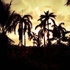 Jungle City by eurodak