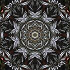 Gum Leaf Kaleidoscope 01 by fantasytripp